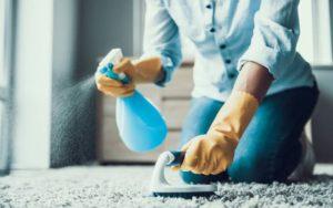 تنظيف المنازل الفراونية