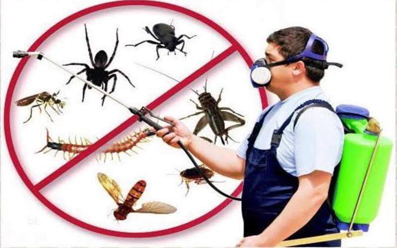 شركة مكافحة حشرات وقوارض بالكويت 66770711